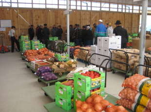 Bruce-Huron Produce Auction